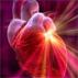 Cardiac disease in Kerala very high