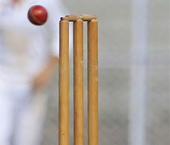 Fighting Badani guides Vidarbha to 219