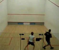 `Old war horses` rule the roost in Squash: 2012