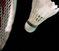 Joshi stuns Hidayat; Saina concedes tie due to injury, fatigue