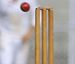 Assam take first innings lead over Andhra