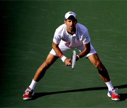 Djokovic breezes through at Indian Wells