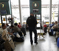 Terror suspects 'waived through' UK airport by inexperienced staff ahead of Olympics