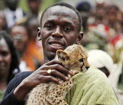 Usain Bolt can't be faster than a cheetah