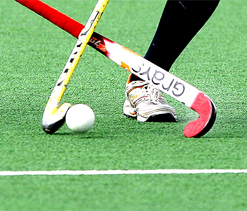 Hockey India League: Punjab Warriors complete domination over Mumbai Magicians