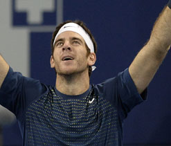 Del Potro defeats Federer to retain Basel title