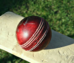 Assam stun MP to enter Vijay Hazare Trophy quarterfinal