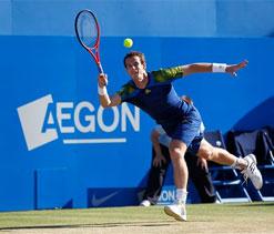 Queen`s title will boost Wimbledon bid, says Murray
