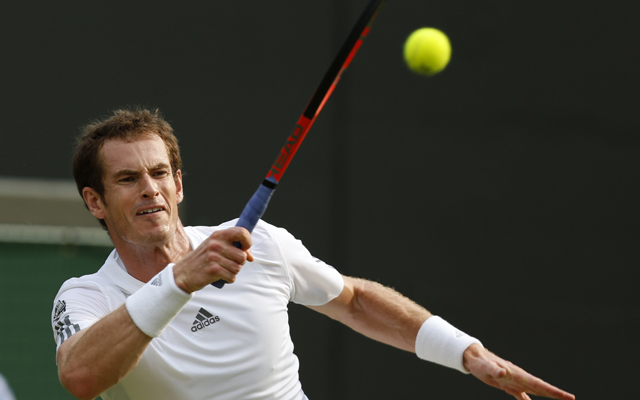 Wimbledon 2013: Stakhovsky ousted as Murray, Ferrer advance
